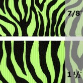 338-544 Key Lime Neon Zebra Grosgrain