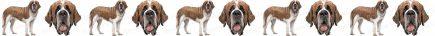 Saint Bernard Dog Breed Custom Printed Grosgrain Ribbon