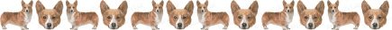 Pembroke Welsh Corgi No1 Dog Breed Custom Printed Grosgrain Ribbon