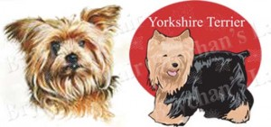 Yorkshire Terrier No1 Dog Breed Ribbon Design