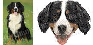 Bernese Mountain Dog Breed Ribbon Design