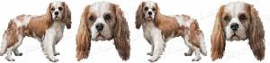 Cavalier King Charles Blem Dog Breed Ribbon Design