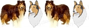 Collie Dog Breed Ribbon Design