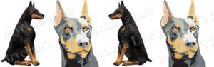 Doberman Dog Breed Ribbon Design