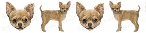 Chihuahua Dog Breed Ribbon Design