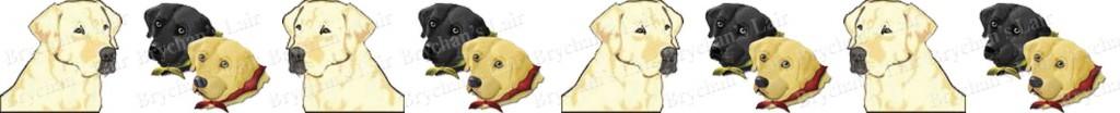 Labrador Retriever Medley Dog Breed Custom Printed Grosgrain Ribbon