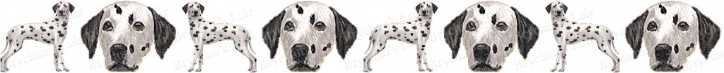 Dalmatian Black & White Dog Breed Custom Printed Grosgrain Ribbon