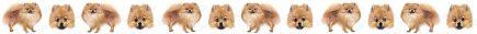 Pomeranian Dog Breed Custom Printed Grosgrain Ribbon