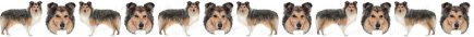 Shetland Sheepdog Dog Breed Custom Printed Grosgrain Ribbon