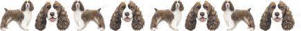 Springer Spaniel Dog Breed Custom Printed Grosgrain Ribbon