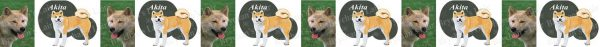 Akita Dog Breed Custom Printed Grosgrain Ribbon
