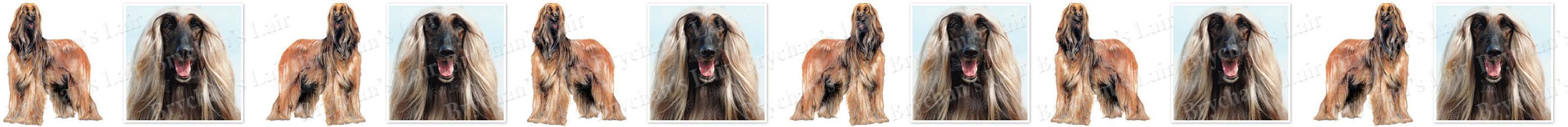 Afghan Hound Dog Breed Custom Printed Grosgrain Ribbon