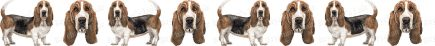 Bassett Hound Dog Breed Custom Printed Grosgrain Ribbon