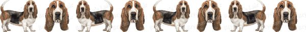 Bassett Hound Dog Breed Custom Printed Grosgrain Ribbon