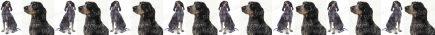 Blue Tick Hound Dog Breed Custom Printed Grosgrain Ribbon