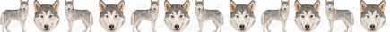 Siberian Husky Dog Breed Custom Printed Grosgrain Ribbon