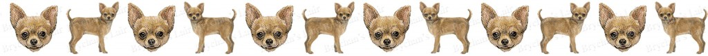 Chihuahua Dog Breed Custom Printed Grosgrain Ribbon