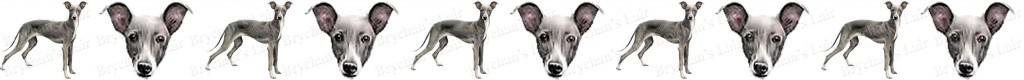 Italian Greyhound Dog Breed Custom Printed Grosgrain Ribbon