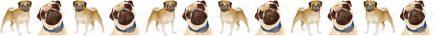 Pug No1 Dog Breed Custom Printed Grosgrain Ribbon