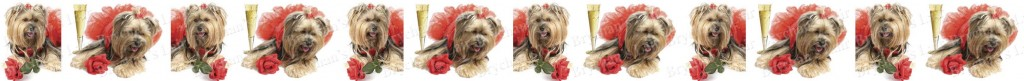 Yorkshire Terrier Champagne & Roses Dog Breed Custom Printed Grosgrain Ribbon