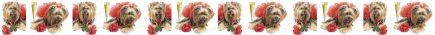 Yorkshire Terrier Champagne & Roses Dog Breed Custom Printed Grosgrain Ribbon