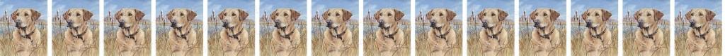 Yellow Labrador Retriever No4 Dog Breed Custom Printed Grosgrain Ribbon