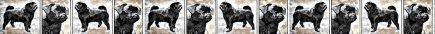 Black Pug Dog Breed Custom Printed Grosgrain Ribbon