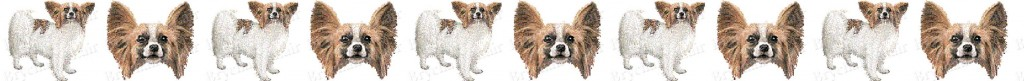 Papillon Dog Breed Custom Printed Ribbon