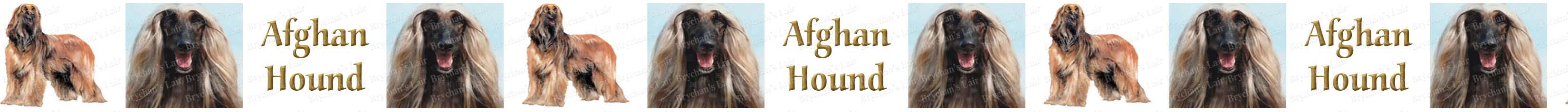 Labeled Afghan Hound Custom Printed Dog Breed Ribbon